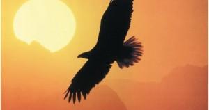 Αετός