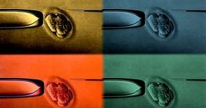 Πρότυπος τρόπος διαχείρισης βιολογικών προϊόντων στα Γρεβενά