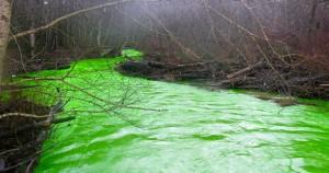 Το ποτάμι έγινε πράσινο