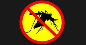 Kαταπολέμηση κουνουπιών με τις Αρμόδιες Υπηρεσίες του Δήμου