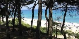 Παραλία Σκάλας