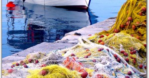 Αλιεία