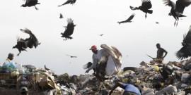 Ημιπαράνομοι ρακοσυλλέκτες ανταγωνίζονται τα όρνεα και τους γλάρους για μια ζωή στο Ζαρντίμ Γκραμάσου