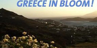 «Η Ελλάδα ανθίζει»