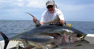 Ψάρεμα τόνου