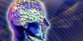Eγκέφαλος ανθρώπου