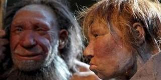 Homo sapiens - Νεάντερνταλ