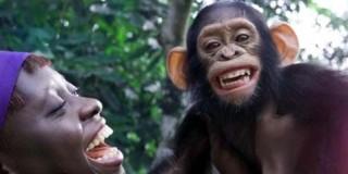 Άνθρωπος με χιμπατζή
