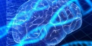 Τη γενετική βάση πίσω από τη συρρίκνωση του εγκεφάλου που προκαλεί η κατάθλιψη εντόπισαν ερευνητές του Πανεπιστημίου Γέιλ