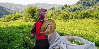 Τουρκία:το ταξίδι του χρόνου