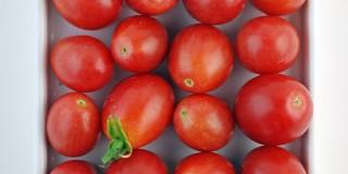 Η ντομάτα σώζει