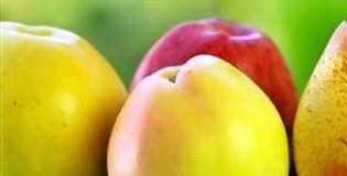 Φρούτα του Σεπτέμβρη
