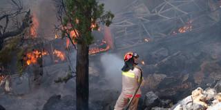 Φωτιές στη Χίο