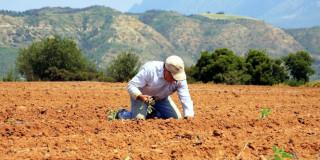 Έλληνας Αγρότης