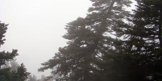 Ορειβατικός Σύλλογος Κεφαλλονιάς