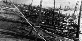 To συμβάν της Τουνγκούσκα ισοπέδωσε 1.200 τ.χλμ δάσους. Η φωτογραφία από την αποστολή τη Σοβιετικής Ακαδημίας Επιστημών το 1927.