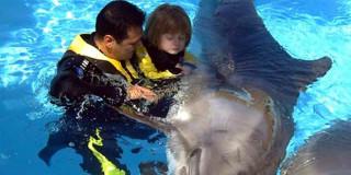 Δελφίνια κατά των ψυχικών ασθενειών
