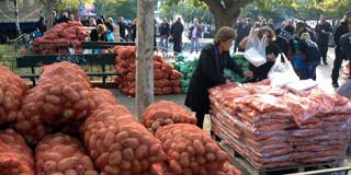 Διανομή τροφίμων της Χρυσής Αυγής