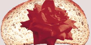 Ψωμί και τριαντάφυλλα