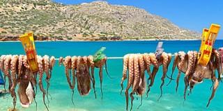 Επιχείρηση «απάτη» σε βάρος Ελλήνων τουριστών