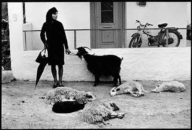 [Γυναίκα με κατσίκα, δεκαετία 1960]