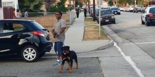 Αστυνομικός πυροβολεί εν ψυχρώ και σκοτώνει σκύλο