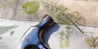 Η τεχνική του Hapa Zome απο την Α. Στελλάτου στο Βοτανικό Κήπο Κεφαλονιάς