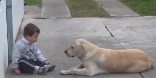 Ένα παιδί με σύνδρομο Down και ένα σκυλί