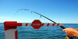 Ερασιτεχνικό ψάρεμα