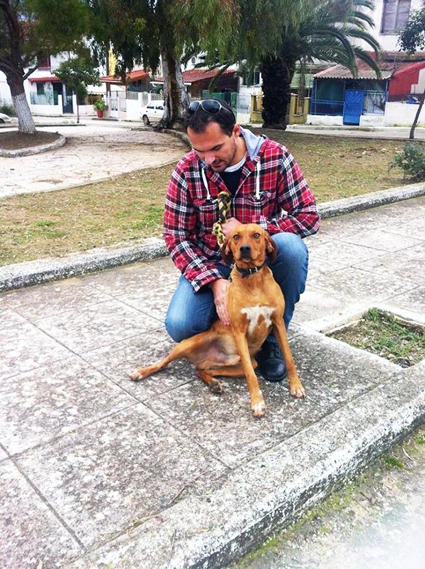 Υιοθετήστε και σώστε αυτό το πανέμορφο σκυλάκι