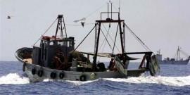 Υπερεκμετάλλευση αλιευμάτων σε Ιόνιο και Αιγαίο