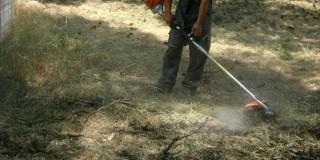 Αποψίλωση και καθαρισμός