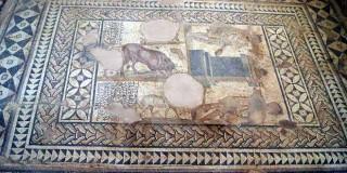 A polychrome mosaic floor in Skala Roman villa