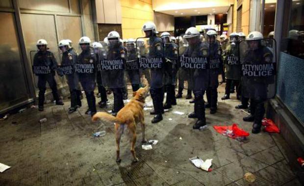 Ο σκύλος-σύμβολο των διαδηλώσεων της Αθήνας