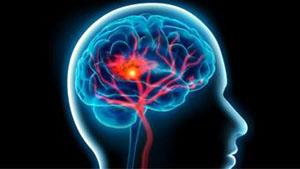 Το «σύστημα ανταμοιβής» του ανθρώπινου εγκεφάλου υπεύθυνο για πολλά συναισθήματα
