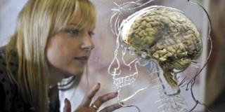 Εγκέφαλος και ασθένειες