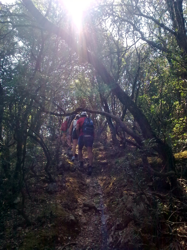 Πεζοπαρία από τον Ορειβατικό Σύλλογο Κεφαλονιάς