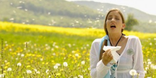 Καλώς ήρθες Άνοιξη …καλώς ήρθατε αλλεργίες !