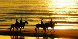 Κεφαλονιά: το βασίλειό μου για ένα άλογο