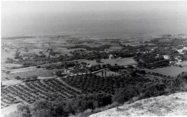 """Φωτογραφία τραβηγμένη από το """"Κοτρώνι"""" της Λακήθρας (με δυτικό προσανατολισμό).Αποτυπώνει τον κάμπο των Μηνιών ,προτού κατασκευαστεί το αεροδρόμιο."""