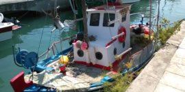Κεφαλονιά: Ψαρεύτηκε τόνος 220 κιλά